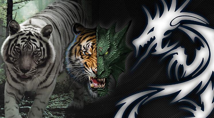 Memahami Dragon Tiger, Permainan Judi Online Terpopuler Saat Ini